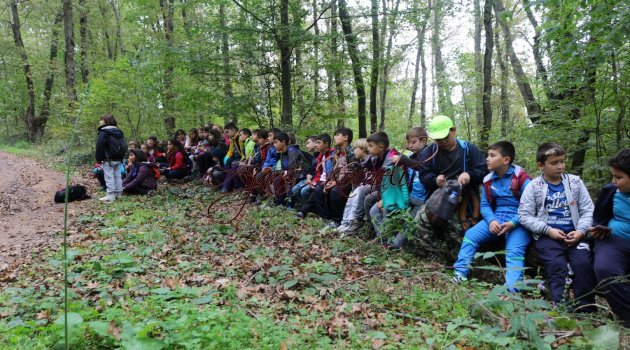 Doğa Kâşifleri Ormanya'da