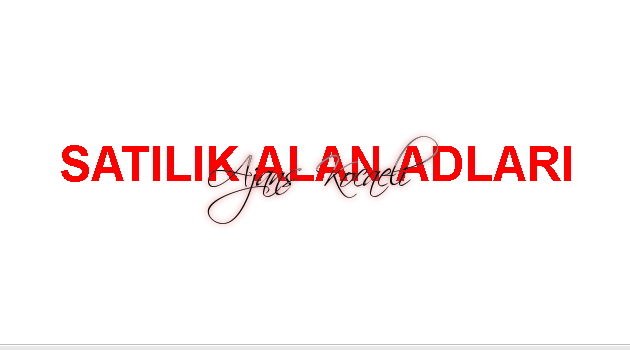 SATILIK ALAN ADLARI