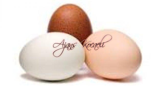 Yumurtaya zam yolda